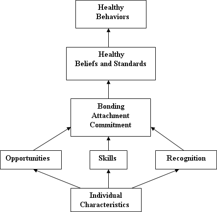 "Image depicting the Social Development Strategy diagram with directional arrows between the following phases, building from the bottom up: ""Individual Characteristics; Opportunities; Skills; Recognition; Bonding Attachment Commitment; Healthy Beliefs and Standards; Healthy Behaviors."""