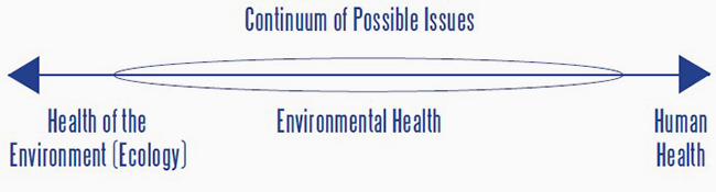 Continuum of Possible Issues chart.