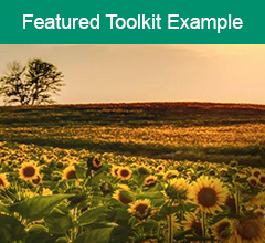 """Sunflower field with the text """"Featured Toolkit Example"""" at the top."""