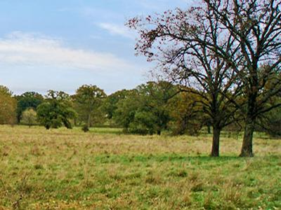 Photo of a landscape of Douglas County.