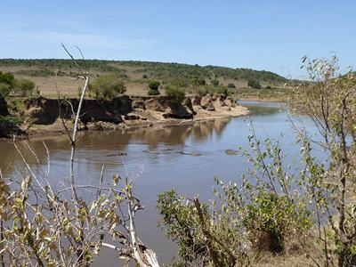 Image of a river in Kenya.