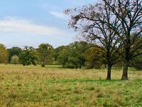 Photo of a landscape of Douglas County.