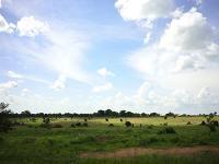 Photo of Kenya landscape.